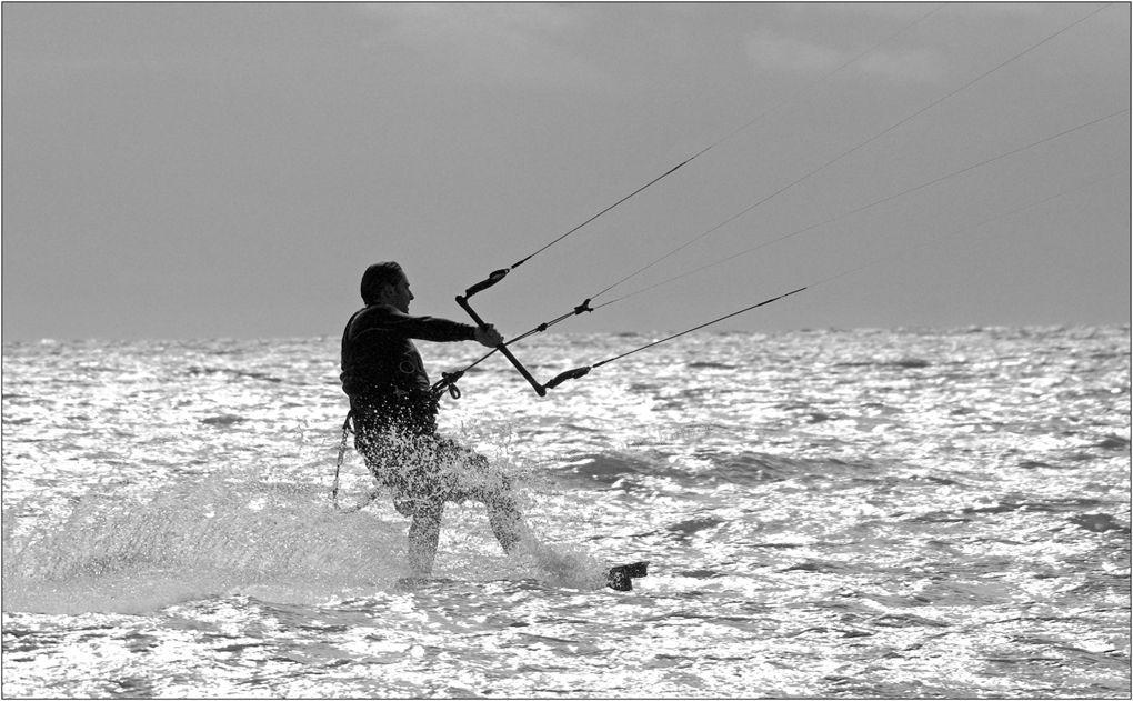 Trident Wind Surfer - Mono