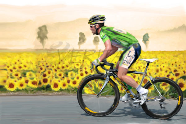 Cavendish in Green and Yellow
