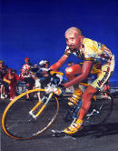 Pantani The Pirate