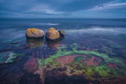 Boulders and Seaweed