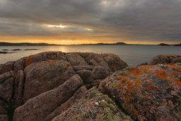 Lichen Covered Granite