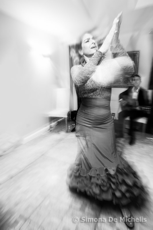 Flamenco Dancer at private event