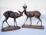 Roe Deer Doe and Buck