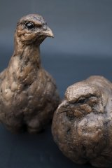 Partridge Pair Bronze Cold Cast