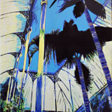 Bat Palm, Screenprint and relief print, edition of 15