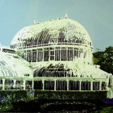 Palm House - Screen Print edition of 20