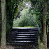 steps in a park