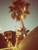 Hotel California (2012)