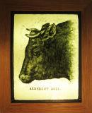 Alderney Bull