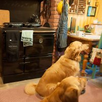 There is even an AGA for me to snuggle up to.