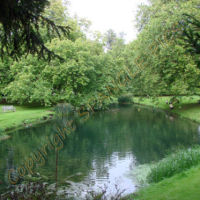 River at Audley End