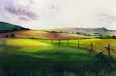 Sussex-Early Evening Light