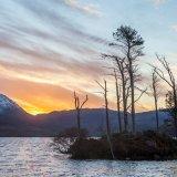 Loch Assynt Ullapool