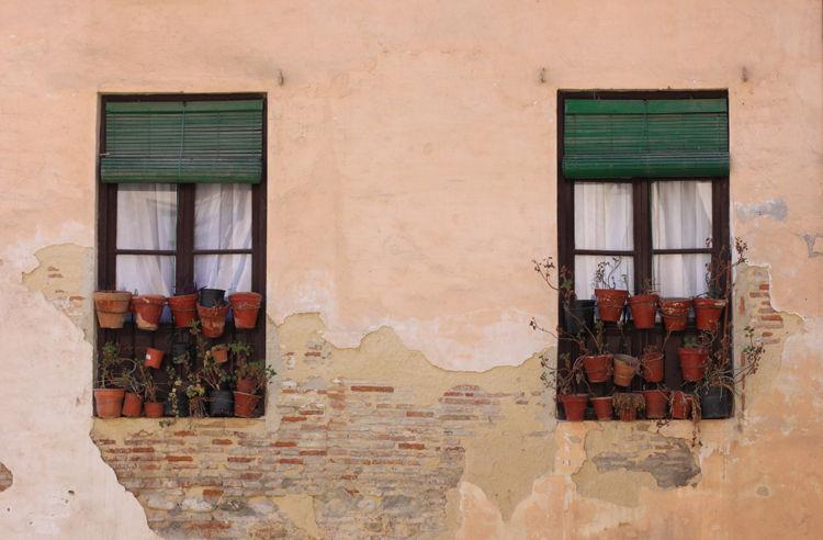 Window Pots