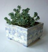David Salsbury Dunes planter