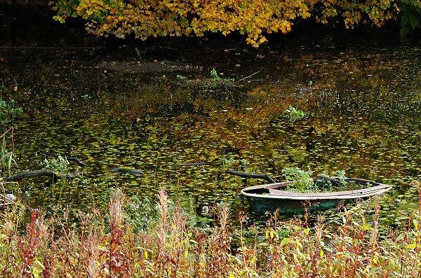 Sunken boat.