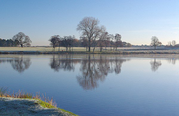 Reflections in Tatton Mere