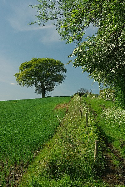 Countryside near Chesterfield