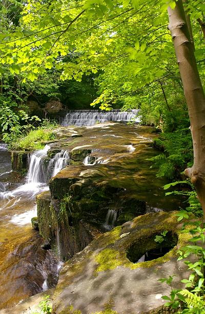River Ogden