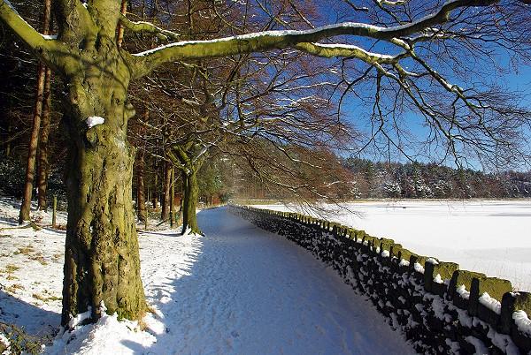 Entwistle walk in the snow