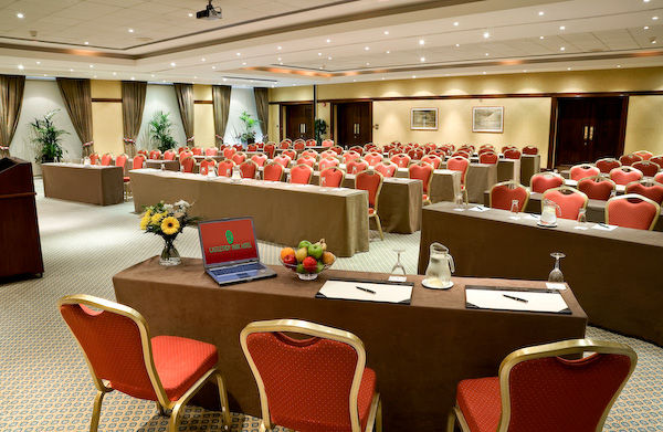 Large Conference Room, Limerick