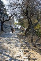 Donkey ride to The Acropolis.