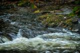 Flowing_Water_#02