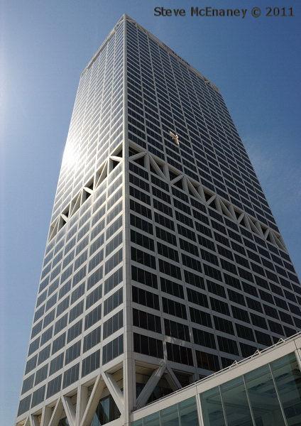 Seagull on the 17th floor