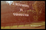 Everything_is_Connected_Peter_Liversidge