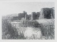 Caerphilly Castle, Autumn morning