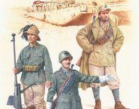 Tunisian Front, 1942-43