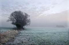 Mist & Frost V