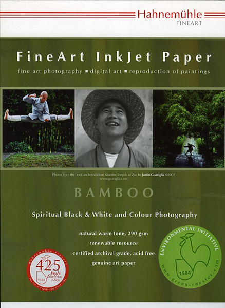 BAMBOO 290 A2