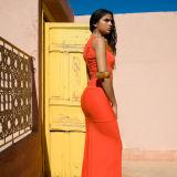Fashion Summer Colors