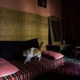 Lup31 Marrakech