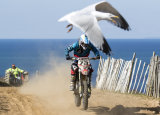 No 73 James Knight with seagull at Sorel
