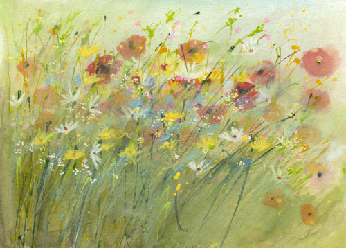 Poppies in the grass