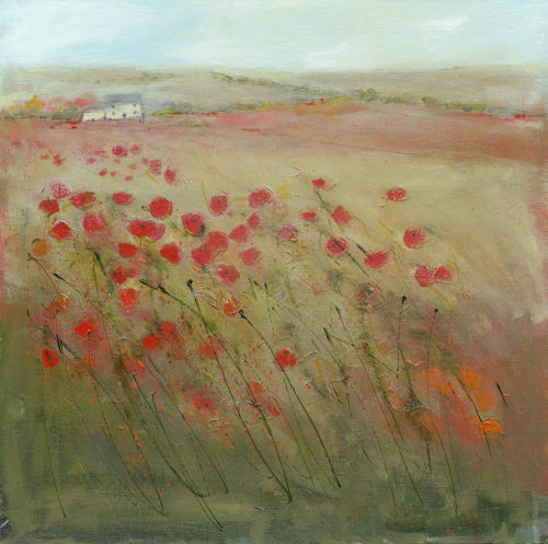 Poppies and wild grasses