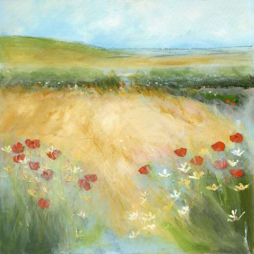 Poppies in the hay field