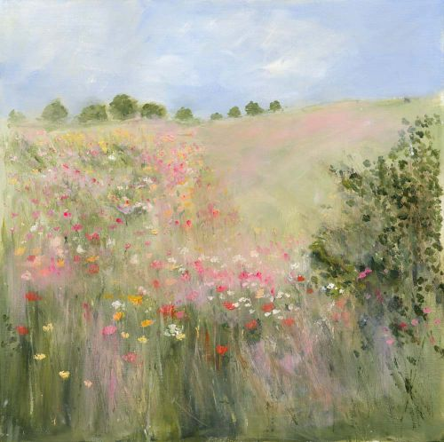 Poppies in a summer meadow