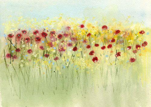 Sunshine and poppies
