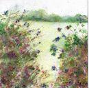 Blackberry hedgerow