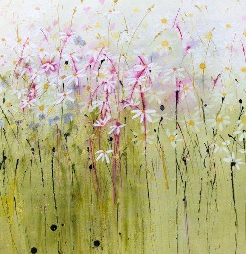 Wild daisy meadow