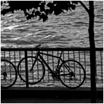 Bicycles, South Bank