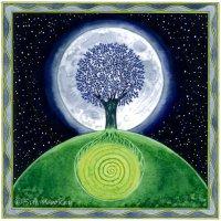 The Midnight Tree