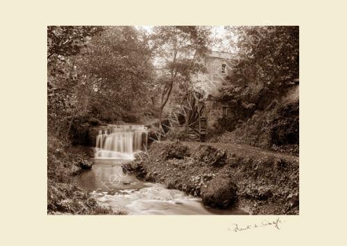 'Rigg Mill'