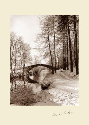 'Beggar's Bridge'