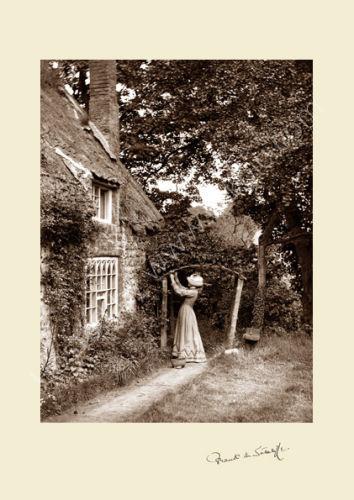 'Gardener's Daughter'