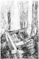 Dog kennel, Culgower Wood