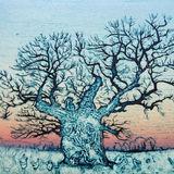 The steadfast oak